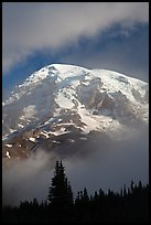 Mountain emerging from clouds. Mount Rainier National Park, Washington, USA. (color)