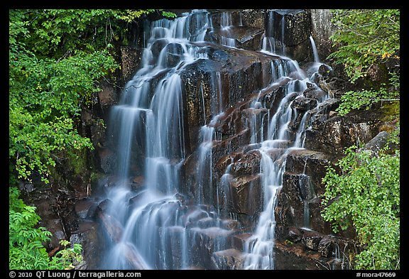 Waterfall over volcanic rock, Stevens Canyon. Mount Rainier National Park (color)
