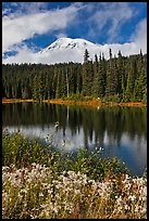 Mount Rainier and clouds seen from reflection lakes. Mount Rainier National Park ( color)
