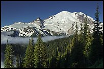 Mount Rainier from Sunrise. Mount Rainier National Park, Washington, USA. (color)