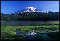 Reflection Lake and Mt Rainier, early morning. Mount Rainier National Park, Washington, USA.