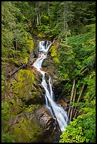 Deer Creek Falls. Mount Rainier National Park ( color)