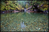 Pebbles in the bed of Panther Creek. Mount Rainier National Park ( color)
