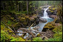 Silver Falls of the Ohanapecosh River. Mount Rainier National Park ( color)