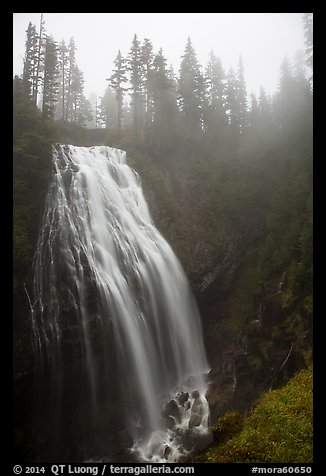 Narada Falls in the fog. Mount Rainier National Park (color)