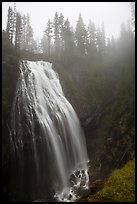 Narada Falls in the fog. Mount Rainier National Park ( color)