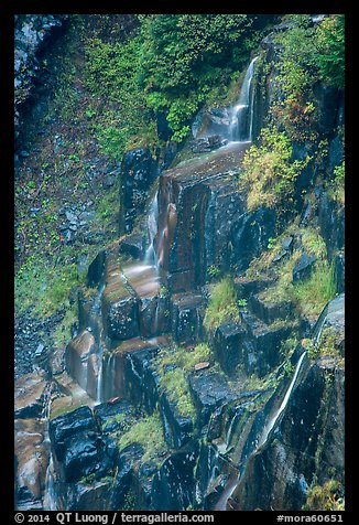 Cascades over columns of basalt, Narada Falls. Mount Rainier National Park (color)
