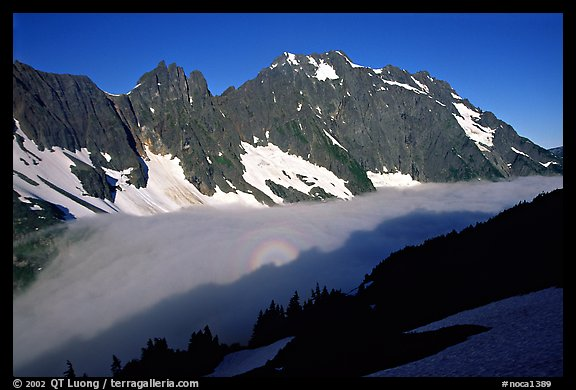 Sun projected on fog below peaks, early morning, Cascade Pass area, North Cascades National Park.  (color)
