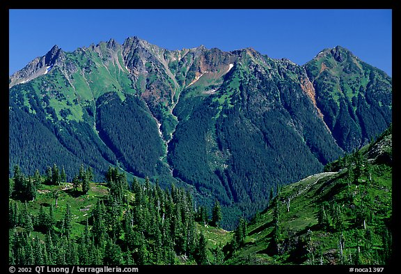 Steep forested peaks, North Cascades National Park. Washington, USA.