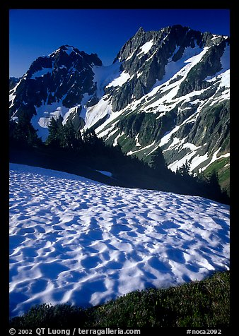 Late summer snow and peaks, Cascade Pass area, morning, North Cascades National Park.  (color)