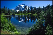Mount Shuksan and Picture lake, mid-day. North Cascades National Park, Washington, USA.