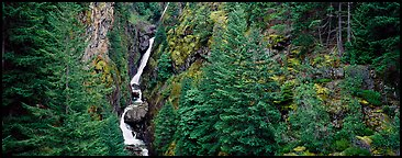 Waterfall in gorge surrounded by forest, North Cascades National Park Service Complex.  (Panoramic color)