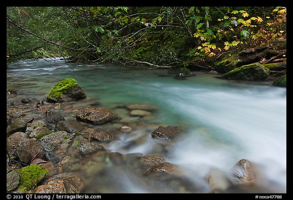 Smooth flow of North Fork of the Cascade River in the fall, North Cascades National Park.  (color)