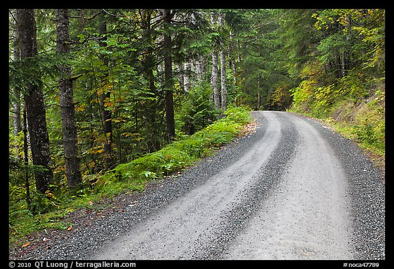Cascade River Road, North Cascades National Park.  (color)