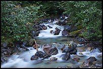Sibley Creek, Mount Baker Snoqualmie National Forest. Washington (color)