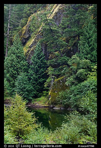 Skagit River gorge, North Cascades National Park Service Complex.  (color)