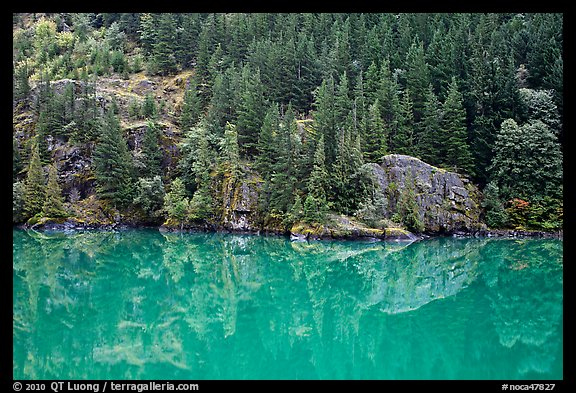 Forest reflected in turquoise waters, Gorge Lake, North Cascades National Park Service Complex.  (color)