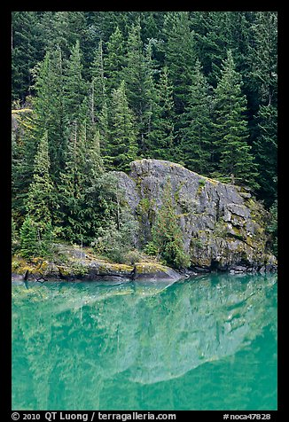 Trees and boulders reflected in Gorge Lake, North Cascades National Park Service Complex.  (color)