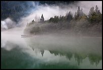 Fog trees, and pier, Diablo Lake, North Cascades National Park Service Complex. Washington, USA.