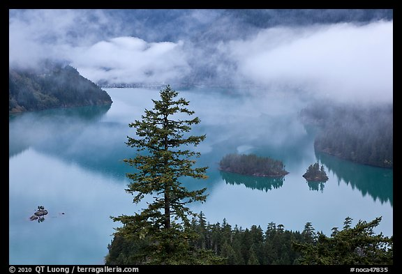 Fog hanging above Diablo Lake, North Cascades National Park Service Complex.  (color)