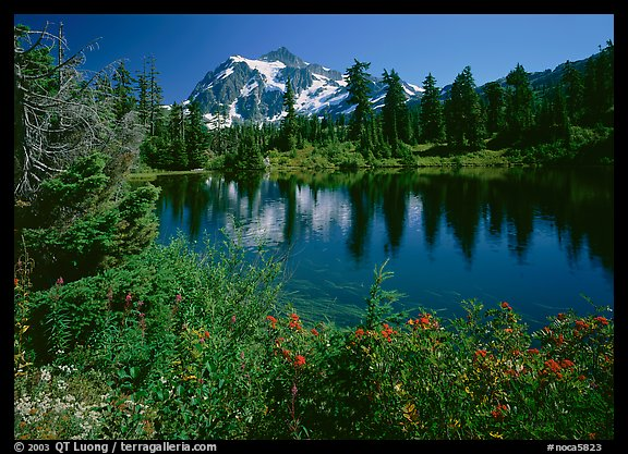 Mt Shuksan reflected in Picture Lake, mid-day. North Cascades National Park (color)