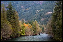 Skagit River in autumn, North Cascades National Park Service Complex.  ( color)