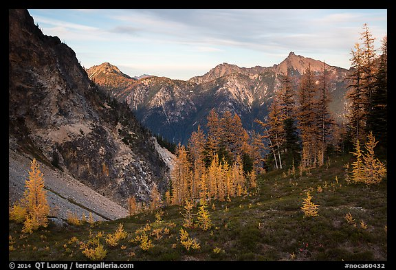 Visitor looking, Easy Pass, North Cascades National Park.  (color)