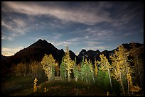 Larch trees and mountains from Easy Pass at night, North Cascades National Park. Washington, USA.