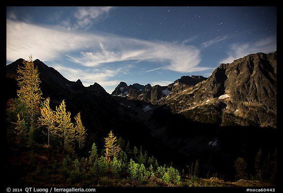 Larch trees and Fisher Creek cirque at night, North Cascades National Park.  (color)