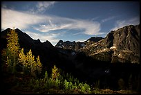 Larch trees and Fisher Creek cirque at night, North Cascades National Park.  ( color)