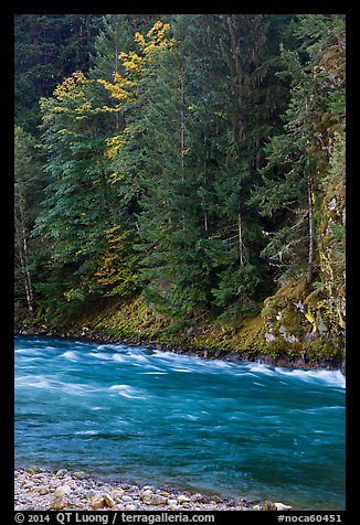 Stream in autumn, Gorge Lake, North Cascades National Park Service Complex.  (color)