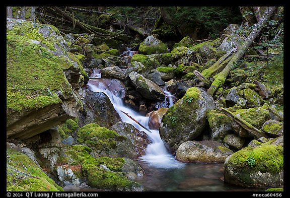 Creek flowing over mossy rocks, North Cascades National Park Service Complex.  (color)