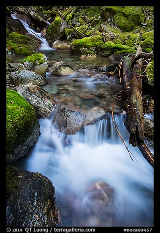 Cascading creek, North Cascades National Park Service Complex.  (color)