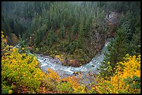 Bend of Agnes Creek from above in autumn, Glacier Peak Wilderness.  ( color)
