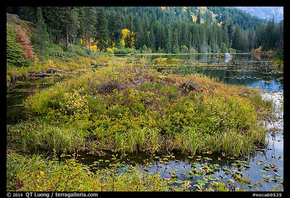 Coon Lake in the fall, North Cascades National Park Service Complex.  (color)