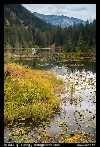 Mountains reflected in Coon Lake in autumn, North Cascades National Park Service Complex.  (color)
