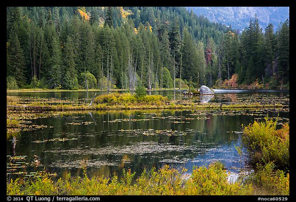 Coon Lake reflections, Stehekin, North Cascades National Park Service Complex.  (color)