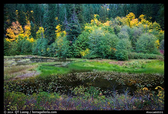 Pond in autumn, North Cascades National Park Service Complex.  (color)