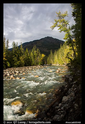 Stehekin River, North Cascades National Park Service Complex.  (color)
