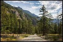 Road, Stehekin Valley, North Cascades National Park Service Complex.  ( color)