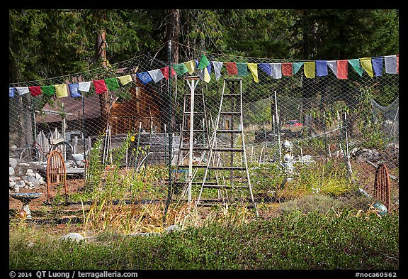 Vegetable garden, Stehekin, North Cascades National Park Service Complex.  (color)