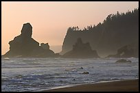 Sea stacks and arch on Shi-Shi Beach. Olympic National Park, Washington, USA. (color)