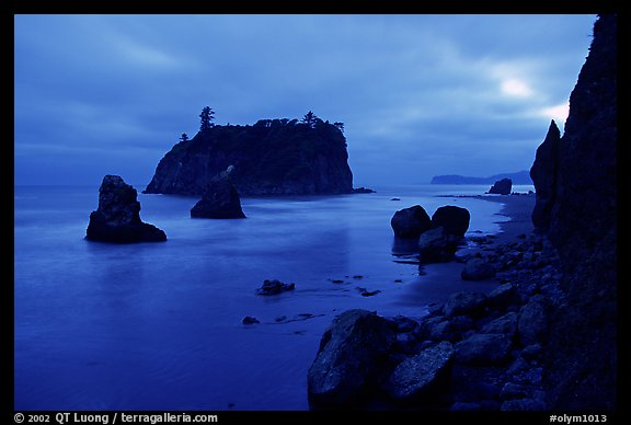 Blue seascape of seastacks at Dusk, Ruby beach. Olympic National Park (color)