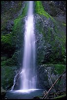 Marymere falls, spring. Olympic National Park, Washington, USA.