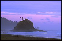 Seastack, Second Beach, dusk. Olympic National Park, Washington, USA.