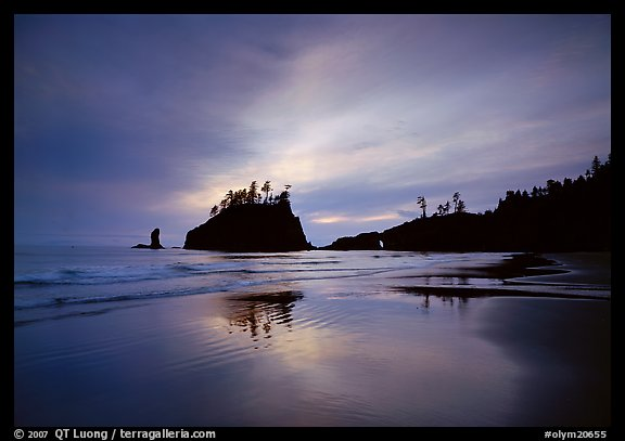 Seastacks reflected at sunset on wet sand, Second Beach. Olympic National Park (color)