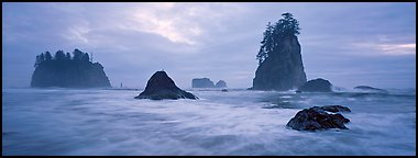 Misty seascape with sea stacks. Olympic National Park (Panoramic color)