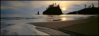 Stream and beach at sunset. Olympic National Park (Panoramic color)