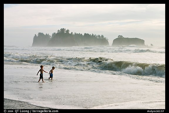 Children playing in water in front of sea stacks, Rialto Beach. Olympic National Park (color)