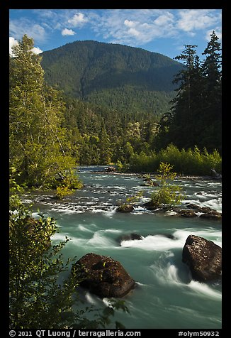 Elwha River. Olympic National Park (color)